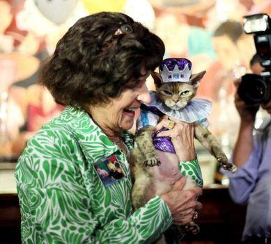 08_Algonquin Cat Fashion Show