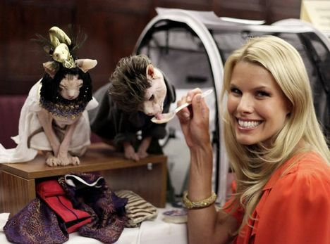 09_Algonquin Cat Fashion Show