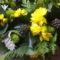 A megnyugvás színei: fehér-sárga-zöld