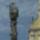 Szentharomsagszobor_916122_20374_t
