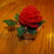 egy mécsestartónyi virág