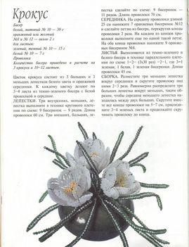 Orosz virágoskönyv18