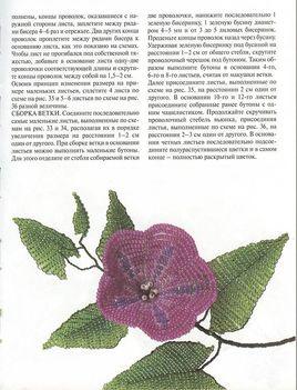 Orosz virágoskönyv25