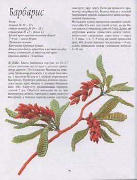 Orosz virágoskönyv46