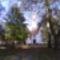 Sarlós Boldogasszony kegykápolna a fák között