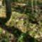 Sziklás őszi erdő