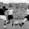 201010271954fociv4 1954 Bern foci döntő