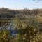 Nerges-hegyi forrás kis természetes érintettlen tóval 1