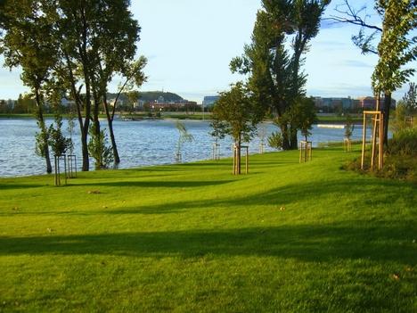 kopaszi gát napfényes parkja