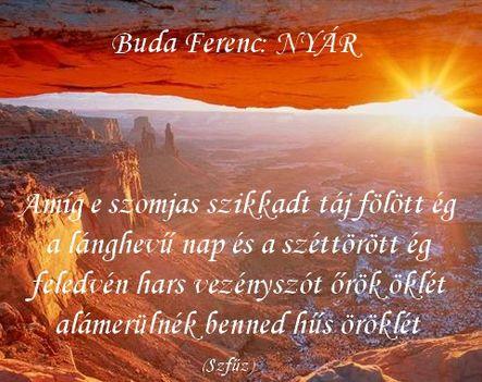 Buda Ferenc Nyár