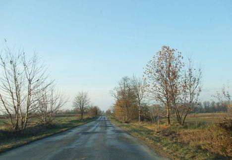 Hazafelé egy őszi napon 13
