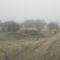 Duna part egy ködös reggelen 2