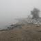 Duna part egy ködös reggelen 5