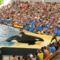 Loro park orka show