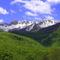 Nemzeti park részlet