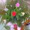 színes rózsák