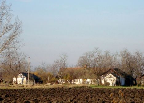Alföldi tanya
