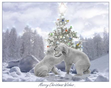 Merry Christmas ! 4