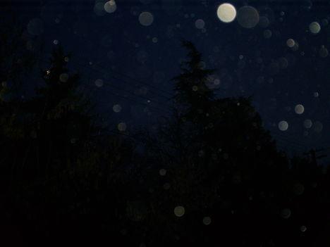 Tegnap este fényképeztem....