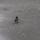 Zsován Ilcsi téli képei