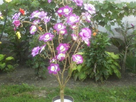 Egyedi készitésű,világitós virágok! 7