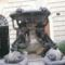 fontana delle tartarughe 1JPG