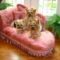 united k-9 yorkie chaise_2 inch