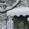 Első hó Sopronban