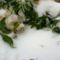 A tél virága...