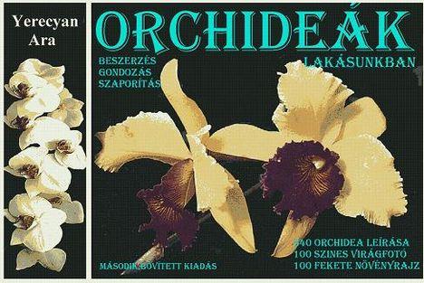 Yerecyan Ara: Orchideák lakásunkban
