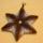 csillagvirág kulcstartó
