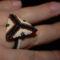 triangulum gyűrű