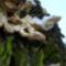 Gomba a hótakaró alatt