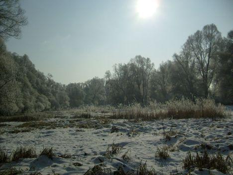 Holtág a bágyadt téli napsütésben