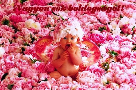 boldogságot kívánok neked
