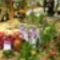 2010 virágkiállítás Kecel 11