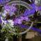 2010 virágkiállítás Kecel 13