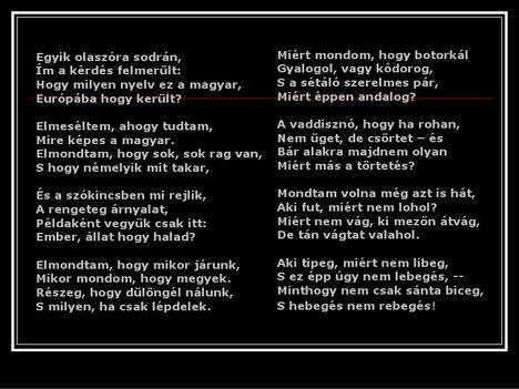 érdekességek a magyar nyelvről 25