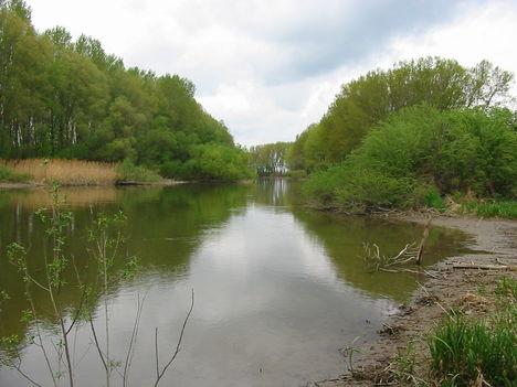 A folyó