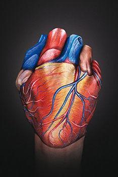 kézfej és ujjak mindenütt 3