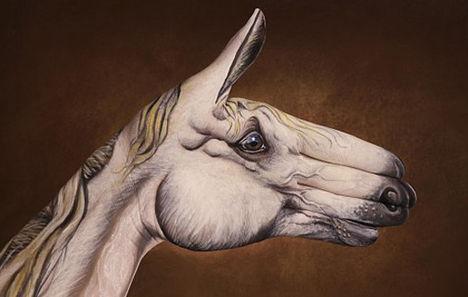 kézfej és ujjak mindenütt 5