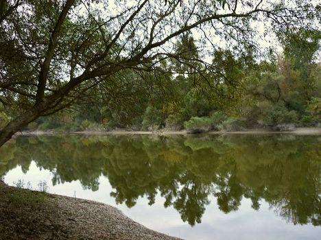 Dunai holtág őszi hangulatban