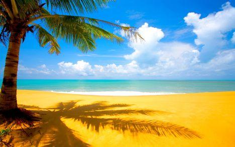 2560x1600_At_the_Beach