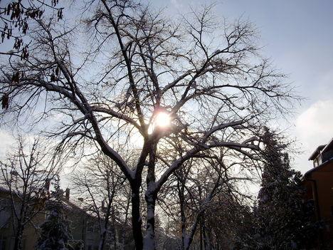 téli képek 15 Sümeg