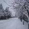 tél, hó, zúzmara 1