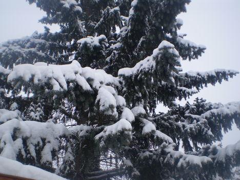 tél, hó, zúzmara 2