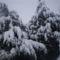 tél, hó, zúzmara 3
