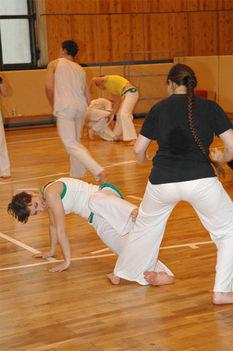 capoeira mozdulatok2