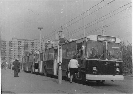 t911-81 (web)