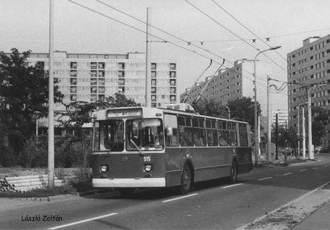 t915-81 (web)